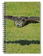 Flying Tiger... Spiral Notebook
