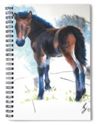 Foal Painting Spiral Notebook