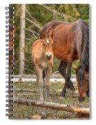 Foal Spot Spiral Notebook