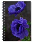 Focused Spiral Notebook