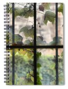 Fog Ivy And Plate Glass Spiral Notebook