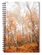 Foggy Autumn Aspens Spiral Notebook