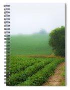 Foggy Bean Field Spiral Notebook