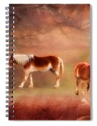 Foggy Day - Featured In Funky Images Group Spiral Notebook