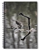 Foggy Morning Pondscape Spiral Notebook