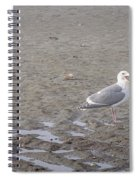 Foggy Seabird Seagulls Brunch Spiral Notebook