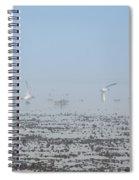 Foggy Seabirds Parksville Beach Spiral Notebook