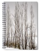 Foggy Winter Tree Fence 13271 Spiral Notebook