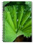 Folded Rain Spiral Notebook