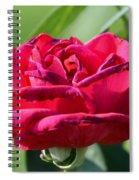 Folding Edges Spiral Notebook