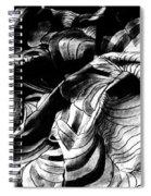 Folding Structure IIi Spiral Notebook