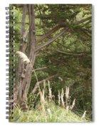 Foliage Art Spiral Notebook