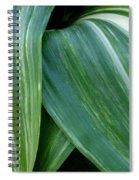 Foliage Folds Spiral Notebook