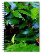 Foliage N Such Spiral Notebook