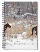 Follow The Leader Spiral Notebook