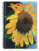 Follow The Sun Spiral Notebook