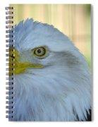 Fontana Eagle Portrait 4 Spiral Notebook