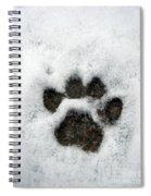 Footprint Series. Cat Spiral Notebook