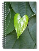 Everything Grows With Love Spiral Notebook