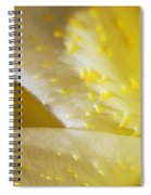 For The Love Of Lilies 4 Spiral Notebook