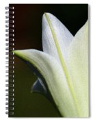 For The Love Of Lilies 9 Spiral Notebook
