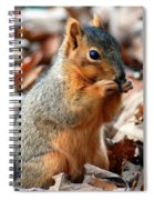 Foraging Through The Autumn Leaves Spiral Notebook