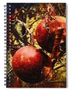 Forbidden Fruit Spiral Notebook
