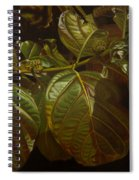 Forbidden Fruits Spiral Notebook