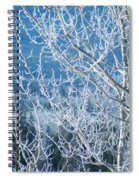 Foreground Frost Spiral Notebook