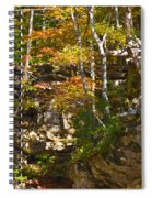 Forest Above The Cave Spiral Notebook