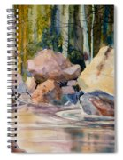 Forest And River Spiral Notebook
