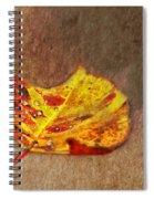 Forest Art Spiral Notebook