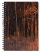 Forest At Sunset Spiral Notebook