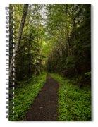 Forest Beckons Spiral Notebook
