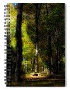 Forest Bench Spiral Notebook