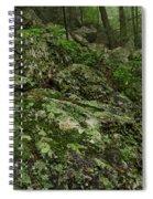 Forest Boulder Field Spiral Notebook