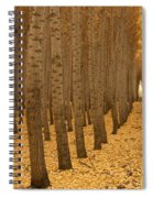Forest Cathedral - One Spiral Notebook