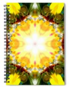 Forest Dawning Spiral Notebook