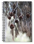 forest decoration - A pine tree give us a natural autumn decoration  Spiral Notebook