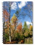 Forest Edge Autumn Pocono Mountains Pennsylvania Spiral Notebook