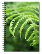 Forest Fern Spiral Notebook