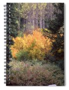 Forest Fire Spiral Notebook
