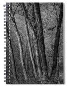 Forest Flight Spiral Notebook