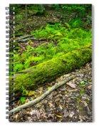 Forest Floor Gosnell Big Woods Spiral Notebook