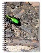 Forest Floor Walker 7259 Spiral Notebook