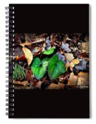 Forest Flora Spiral Notebook