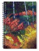 Forest Glade Spiral Notebook