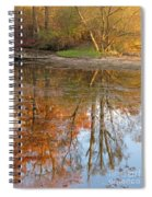 Forest Glow Spiral Notebook
