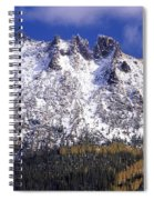 Forest Gold Spiral Notebook