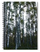Forest II Spiral Notebook